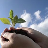 3 conseils pour manager la Génération Y